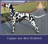 capper-grubetal2.jpg