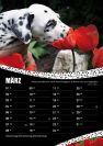 CDF-Fotokalender-2016_verkleinert-03.jpg