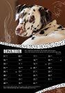CDF-Fotokalender-2016_verkleinert-12.jpg