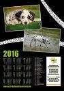 CDF-Fotokalender-2016_verkleinert-13.jpg