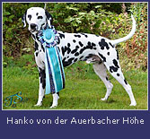 hanko-auerbacher-hoehe2.jpg
